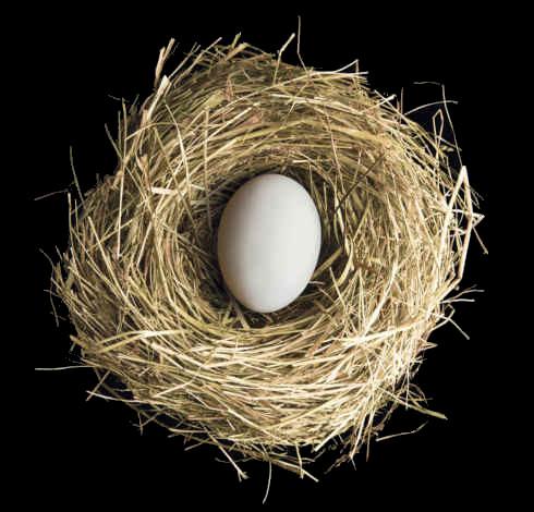 Ei im Nest | Sinnbild für den gewerblichen Versicherungsschutz für junge Unternehmen und Gründer